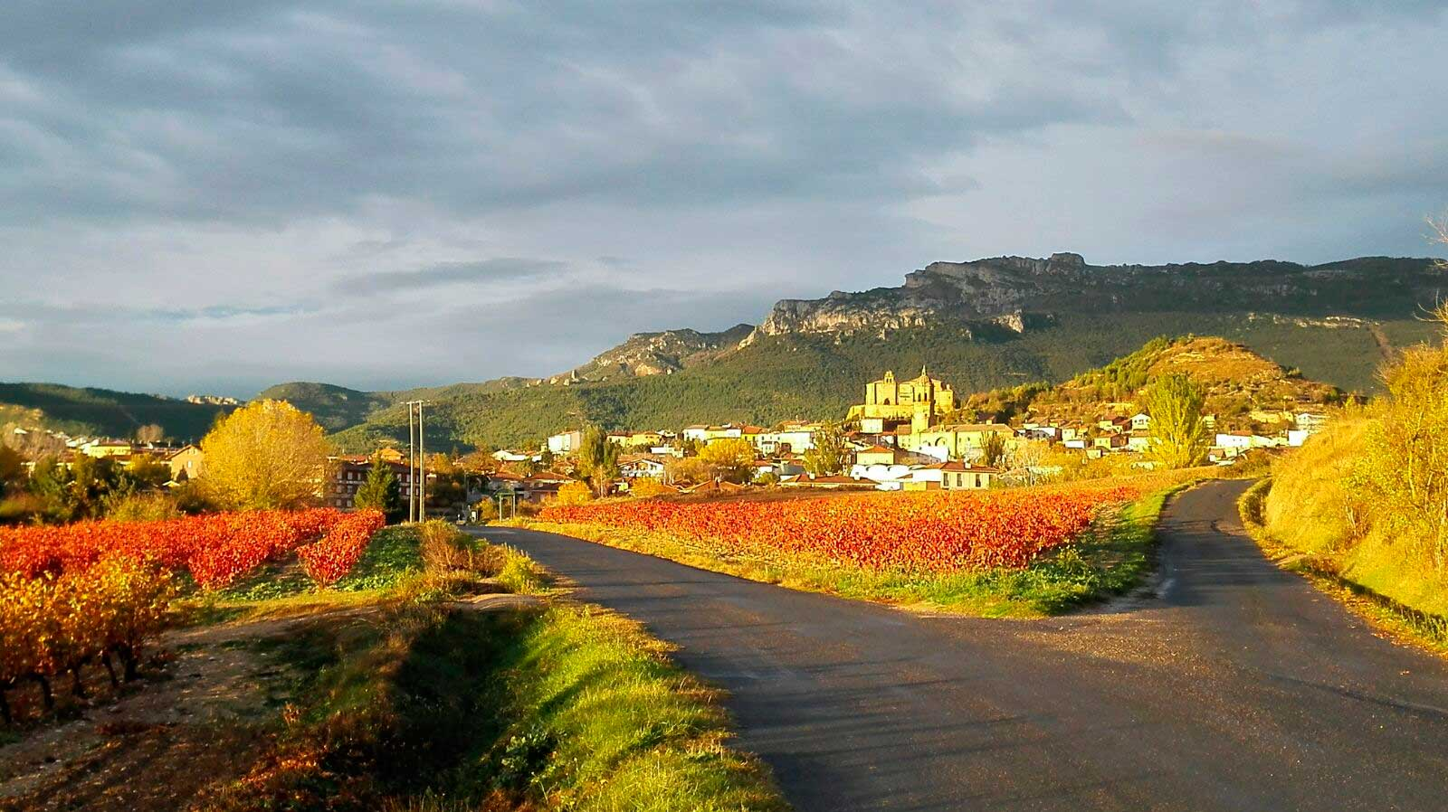 Camino a Labastida